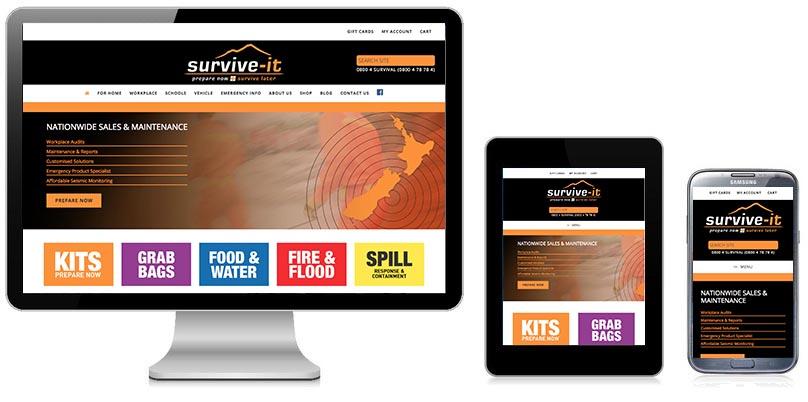 Responsive Web Design Wellington - Anyware
